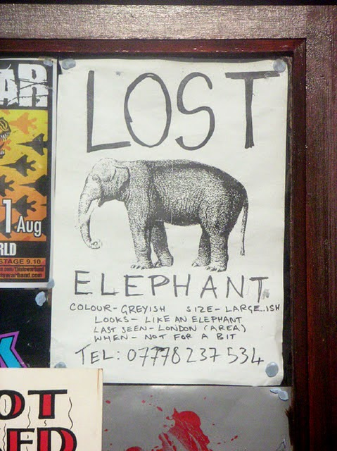 lost-missing-found-elephant